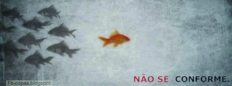 capa-para-facebook34